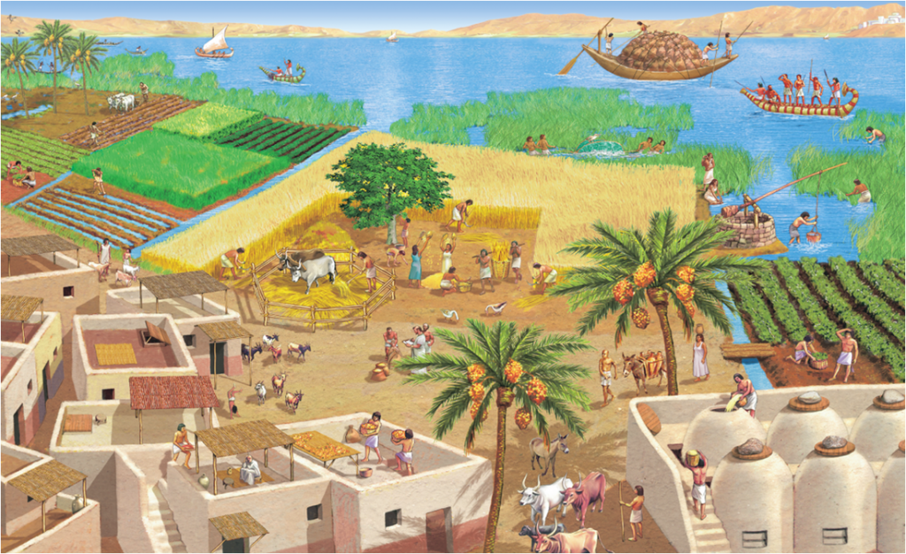 The ancient Egyptians used the Nile for irrigation and transport
